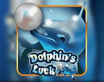 Dolphins Luck